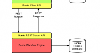 Bonita REST API Integration