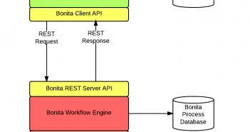Bonita REST API Integration