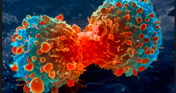 AI Startup for Cancer treatment