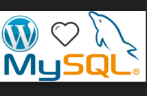 Wordpress mysql installation using Docker