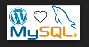 Wordpress mysql installation using Docker