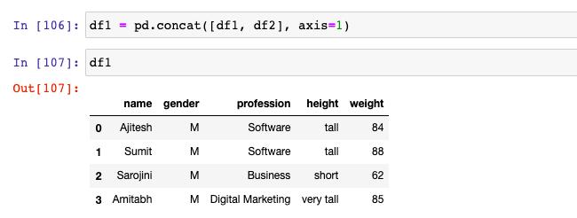 Pandas concat method to append columns to the dataframe