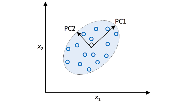 Principal Components representing variance in two dimensions