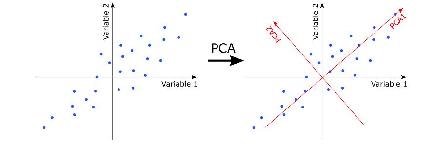 PCA - Directions of maximum variance