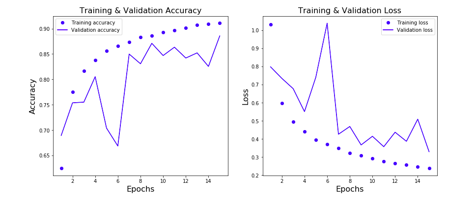 Learning Curve representing Model loss & accuracy vis-a-vis Training & Validation Data