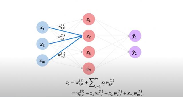 Single layer neural network - Net input explained