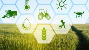 machine learning applications for agriculture use cases